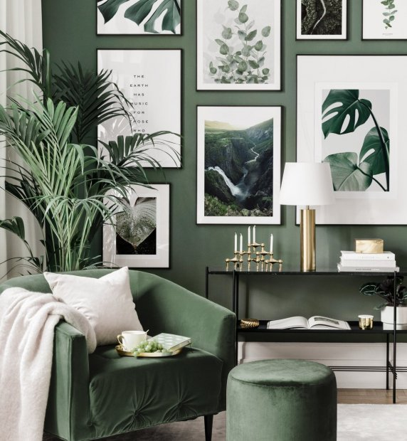 Botanical picture wall plant posters black metal frames